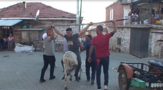 Düğüne Geç Kalan Müzisyene Eşek Şakası