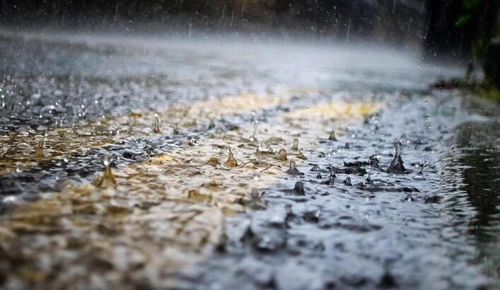 Yağışlar Çiftçiyi Sevindirdi